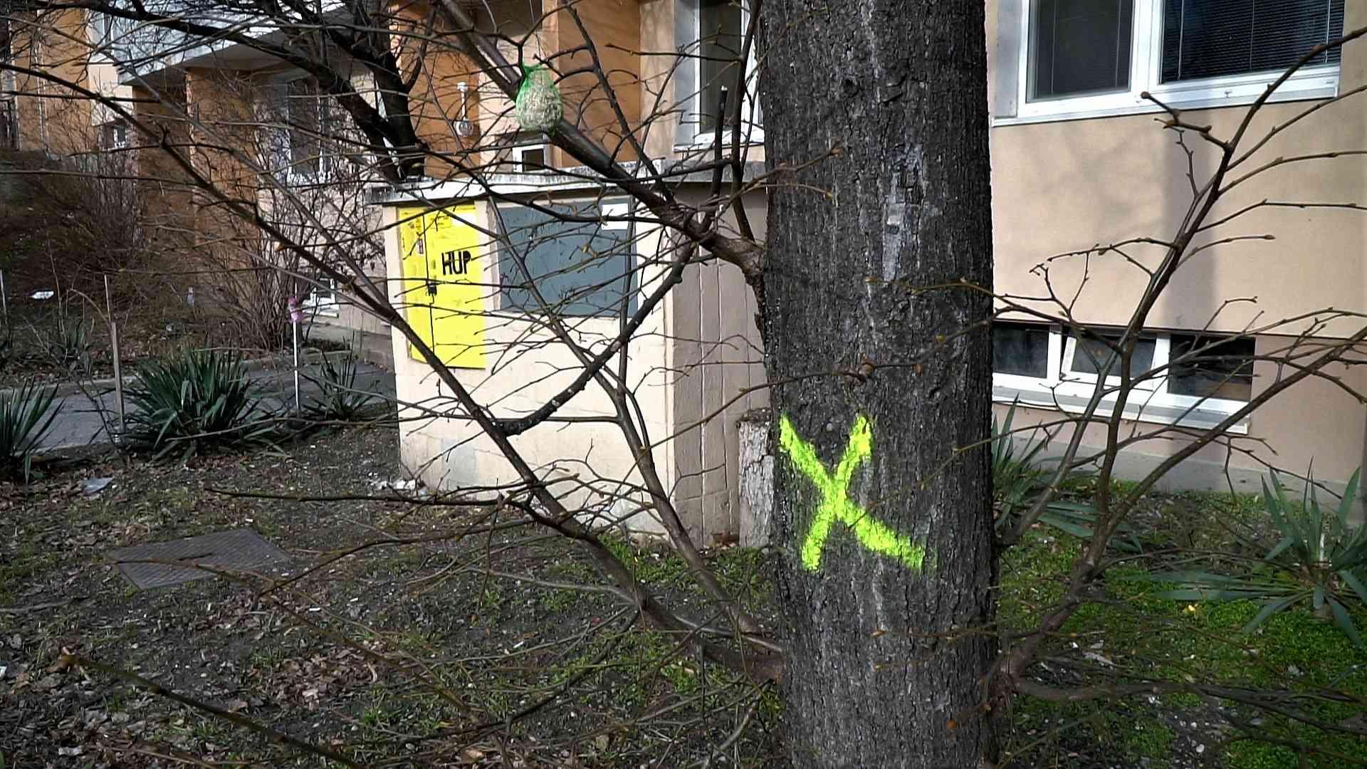 Plynári budú v Karlovej Vsi rúbať ďalších takmer 30 stromov