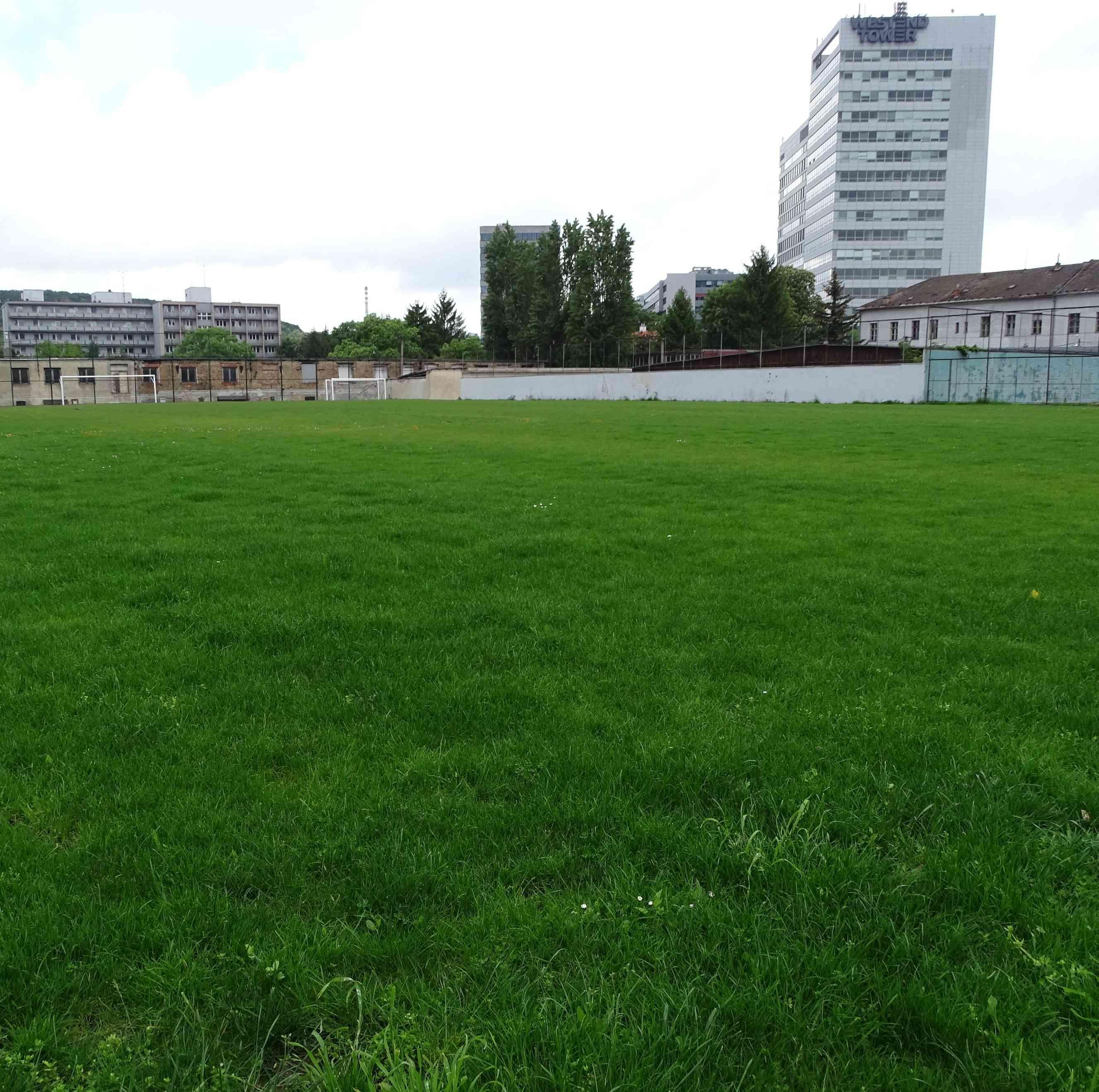 Regenerácia trávnika futbalového ihriska na Patrónke