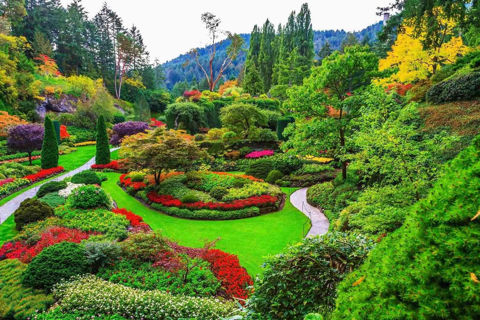 Karlova Ves hľadá záhradného architekta / realizátora záhrad
