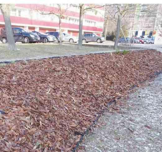 Park na Kempelenovej absolvoval revitalizačnú kúru